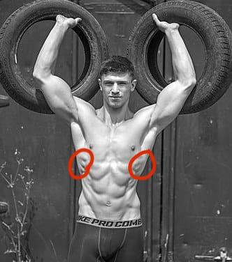 腕立て伏せで鍛えられる部位⑤前鋸筋