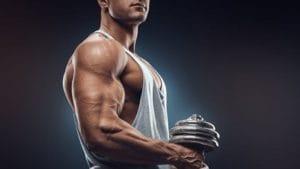 プッシュアップバーで鍛えられる筋肉 三角筋前部(肩の前)