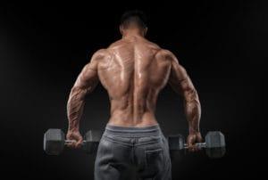 背中の筋肉を徹底解剖!僧帽筋