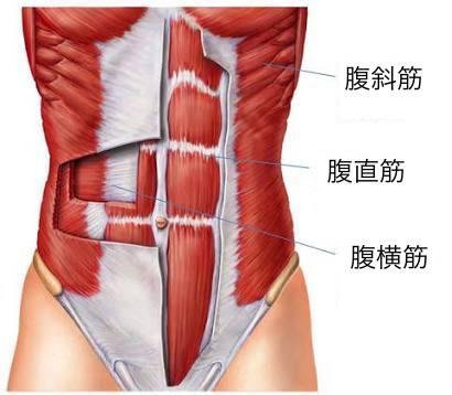 プランクの効果①体幹の強化