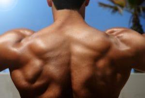 僧帽筋(首から肩にかけての筋肉)