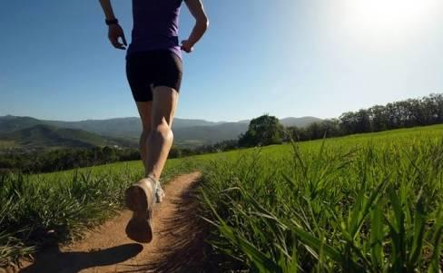 大腿直筋を効果的に鍛える!筋トレ方法とストレッチメニューご紹介