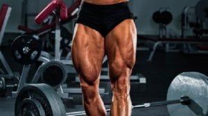 大腿四頭筋(太ももの前の筋肉)