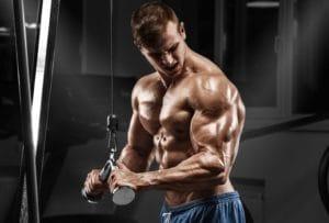 上腕三頭筋のトレーニングをより効果的に効かせるポイントについて