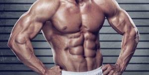 プッシュアップバーで鍛えられる筋肉 腹直筋(腹筋)