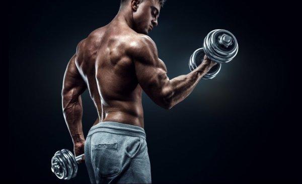 テストステロンの効果①筋肉量を増やし男らしい体にする