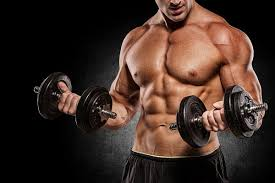 プロテインの効果③「筋トレの頻度を増やすことができる」