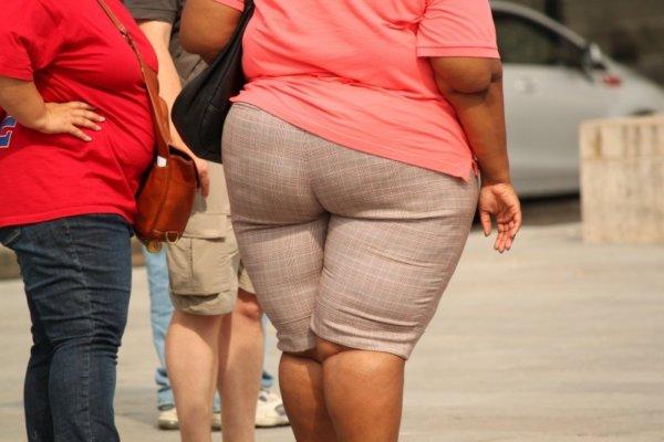 脂肪の増加