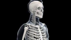 プロテインの効果⑧骨密度が増えることで、骨粗しょう症などのリスクを回避できる