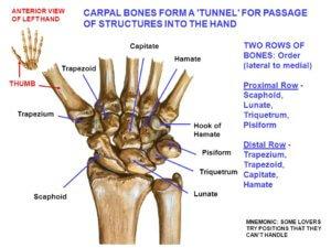 手首は痛めやすい関節である
