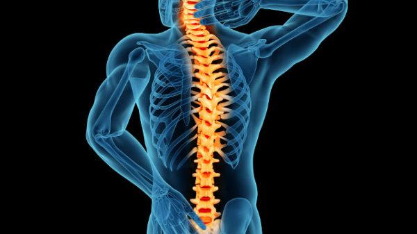 筋力低下による腰痛のメカニズムについて