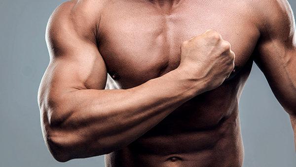 「全身の筋肥大・筋量増強目的」