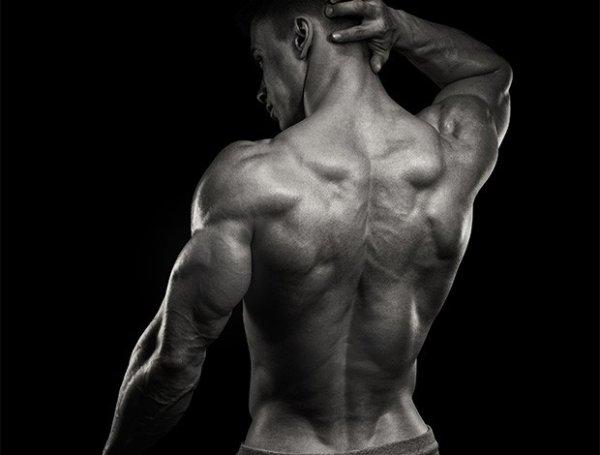 背中の筋トレをしている時に意識して欲しい3つのこと