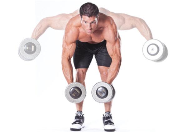 「高重量コンパウンド種目」「低重量アイソレート種目」というトレーニング種別について