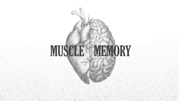 筋肉が蘇る?!「マッスルメモリー」とは