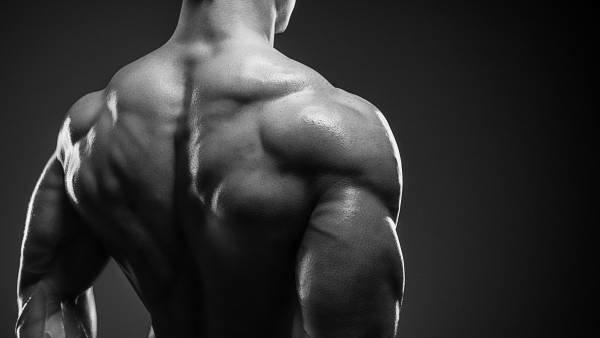 ベンチプレスが強くなるテクニック④「背中の筋力を動員する」