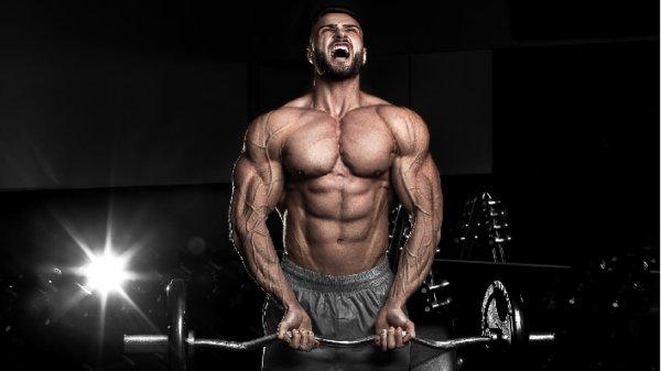 ブルガリアンスクワットの効果⑥:テストステロンが分泌されやすい!
