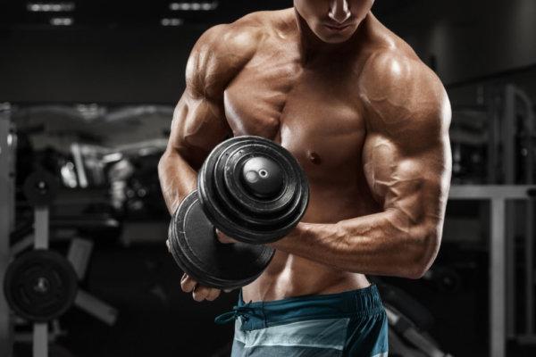 背中を効果的に鍛えるトレーニング器具②「ダンベル」