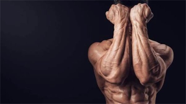 ハンマーカールの筋トレ効果「前腕の強化に効果的」