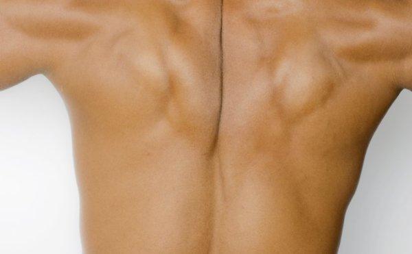 ワンハンドローイングの効果的なコツ②「肩甲骨の動作を意識して取り組む」