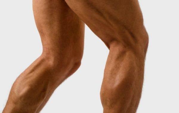 ブルガリアンスクワットで鍛えられる筋肉部位