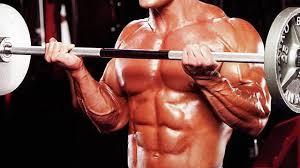 【筋トレ中級者~上級者】バーベルカールの効果的な重量設定「体重の40%~50%」