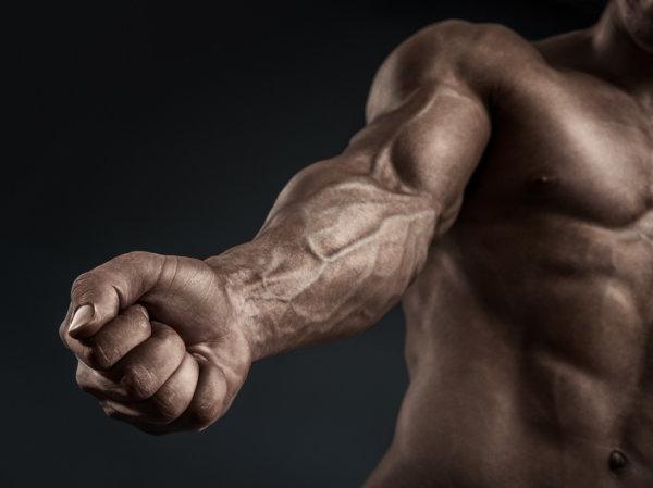 リストカールの筋トレ効果②「太くてたくましい腕を手に入れることができる」