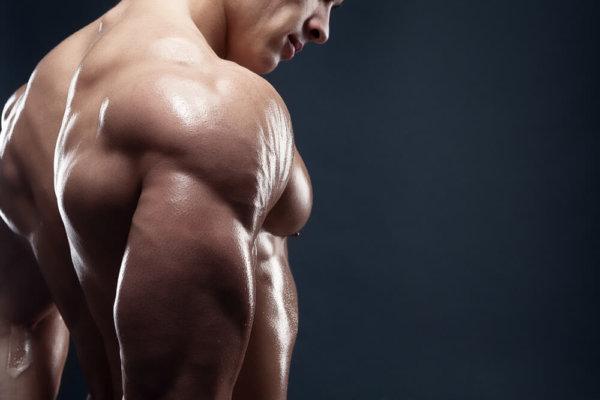 トライセプスキックバックの筋トレ効果④「上腕三頭筋だけを強烈に鍛えることができる」