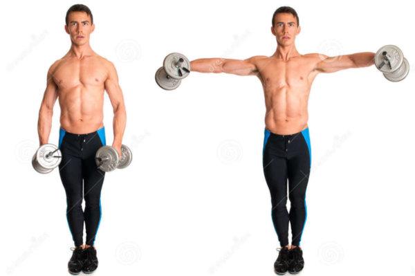 ラテラルレイズの効果的なコツ④「カラダの側面に両腕がつくまでおろさない」