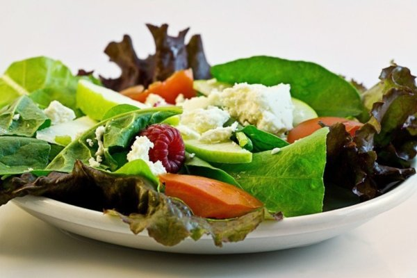 減量期の食事管理
