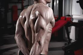 上腕三頭筋の中でも「外側頭・内側頭」に特に効果的