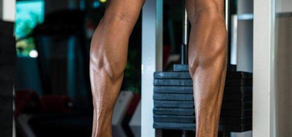 ふくらはぎ(カーフ)の筋肉構造