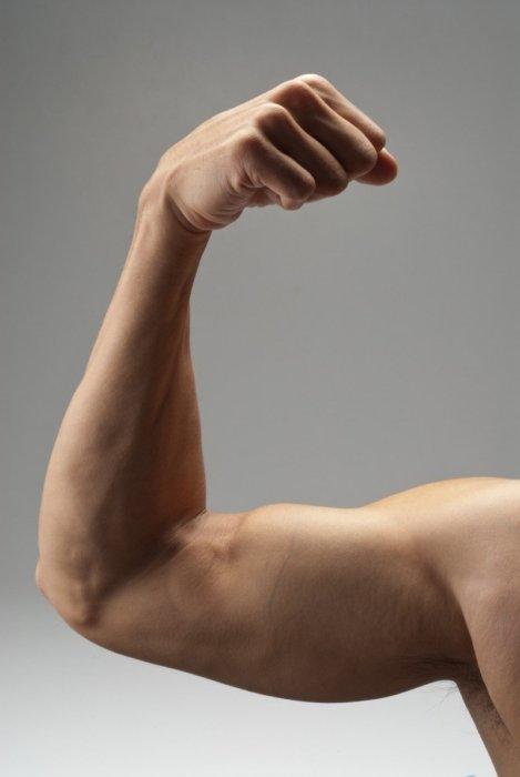 加圧トレーニングのメリット②遅筋と速筋を同時に鍛える
