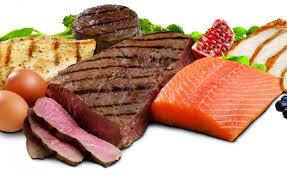 脂肪燃焼効果を最大化するためのコツ②「タンパク質の多い食事を意識する」