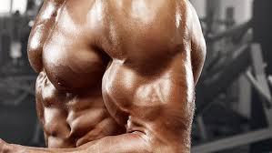 上半身の主要な筋肉④「上腕二頭筋」