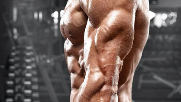 上腕三頭筋(腕の裏側)を鍛える厳選トレーニング種目