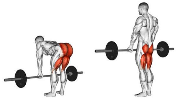 「大臀筋」の効果的な鍛え方