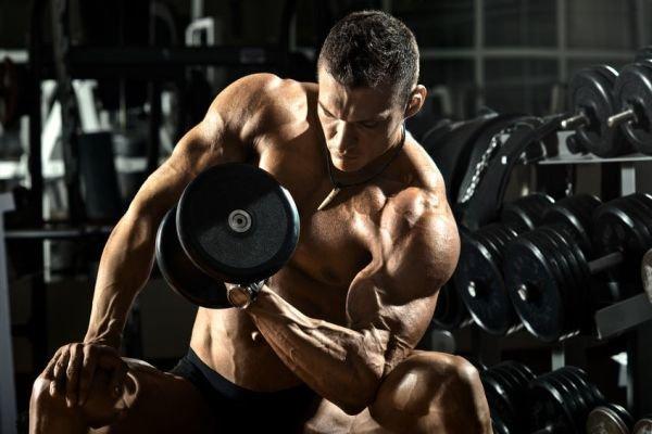 「上腕二頭筋」を鍛えるおすすめなトレーニング