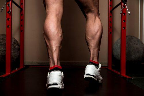 体積の大きいカラダの筋肉②「下腿三頭筋(897c㎥)」