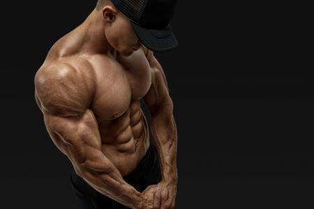 上半身の主要な筋肉②「三角筋」