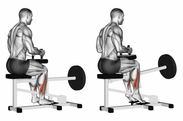 「下腿三頭筋」の効果的な鍛え方
