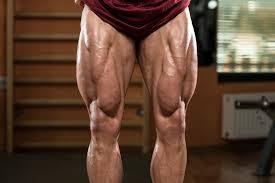下半身(脚・お尻の筋肉)を鍛える厳選トレーニング種目