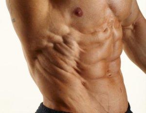 上半身の主要な筋肉⑧「腹斜筋」