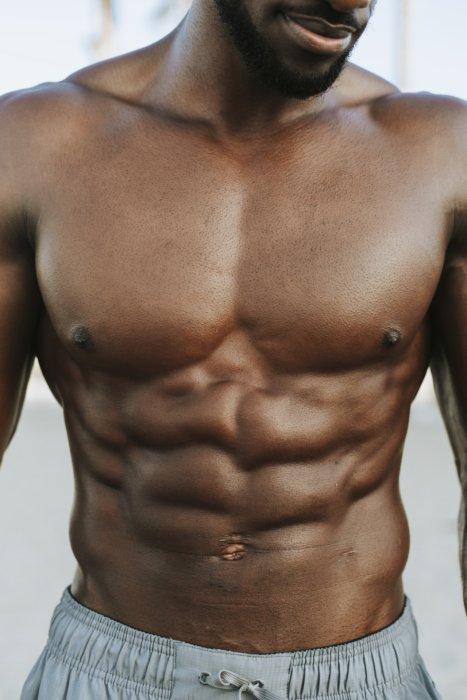 腹筋の部位・構造①腹直筋