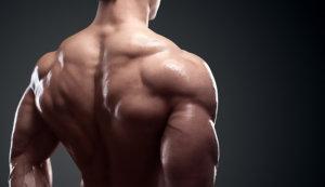 脊柱起立筋を鍛える効果とメリット④「美しい曲線美のある背中を強調できる」