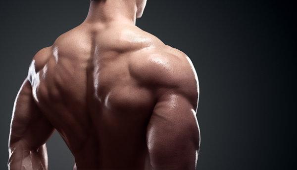 三角筋(肩の筋肉)を鍛える厳選トレーニング種目