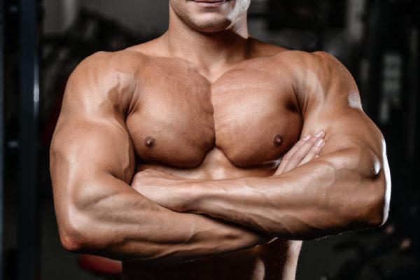 体積の大きいカラダの筋肉⑥「大胸筋(676c㎥)」