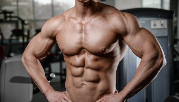 上半身の主要な筋肉①「大胸筋」