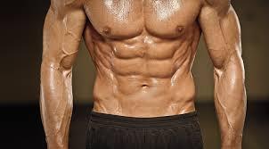 腹筋の構造について