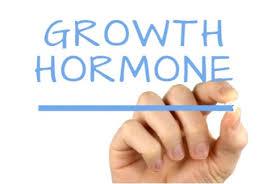 ネガティブ重視筋トレの効果・メリット③「成長ホルモン・テストステロンの分泌促進に効果的」